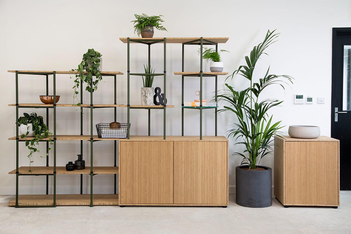 Bamboo - Location 5