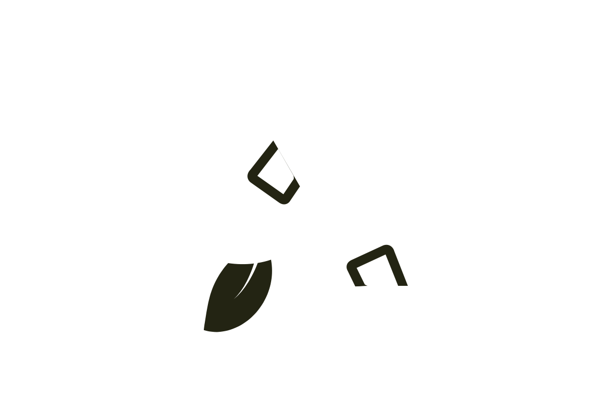 Bamboo-Eco-facts_Packaging